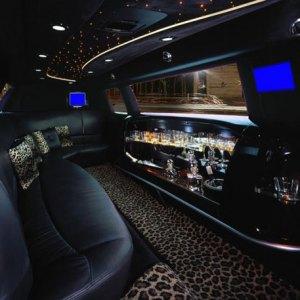 limousine-leopard-montpellier