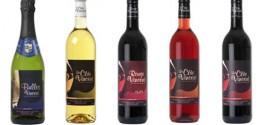 vin-sans-alcool-strasbourg